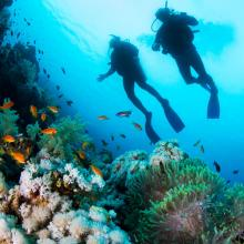 Advanced Open Water Diver image